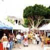 La zona de acampada del Encuentro de Veneguera ya registra 500 inscripciones