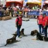La II Feria de Mascotas Responsables se celebra con el I Canicross, en Los Alisios