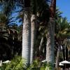 Los hoteles Seaside reciben el Premio Travelife y TUI Umwelt por su gestión ambiental