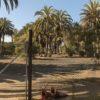 Parque Tony Gallardo, en el entorno del Oasis de Maspalomas