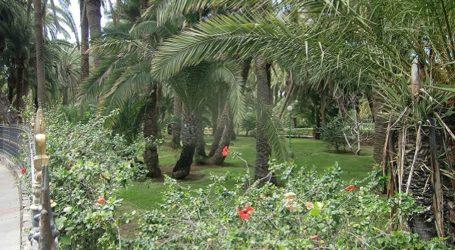 NC valora la vía del Gobierno para proteger el Oasis de Maspalomas