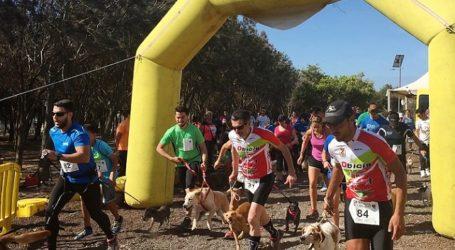 Más de medio centenar de personas corren con sus perros en Santa Lucía