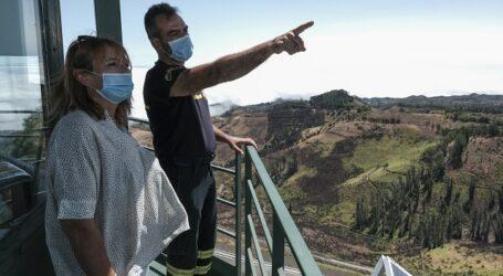 El 75% de la superficie de Gran Canaria que arrasó el fuego se ha recuperado